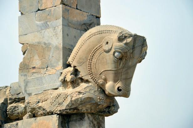 Persepoli, toro dell'achemenide.
