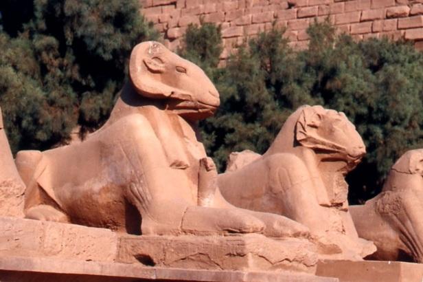 Sfingi criocefale al Tempio di Amon.