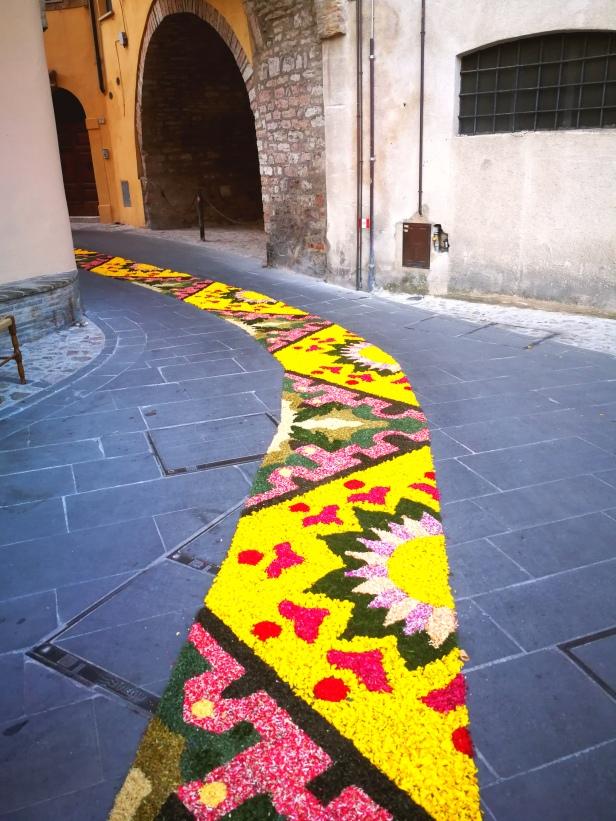 Il tappeto di fiori per la processione del Corpus domini.