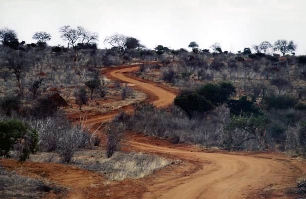 Tzavo Est Parco Nazionale.