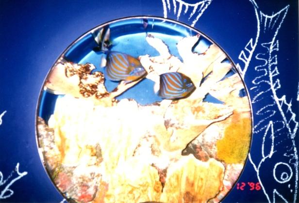 1996 Hayden Planetarium, Manhattan.