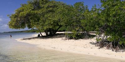 Savaneta Beach.