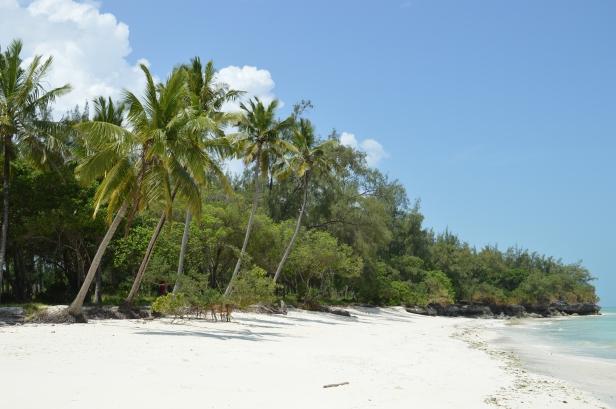 La spiaggia di Pongwe.
