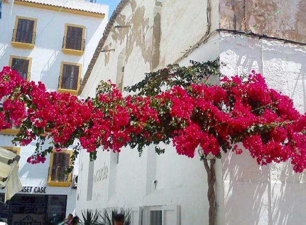 Centro storico di Eivissa.