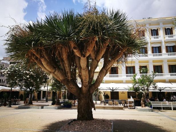 Plaza del Parque, Eivissa.