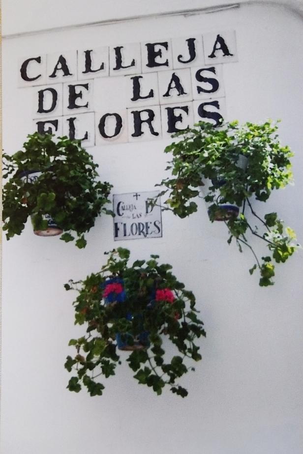 Calleja de las flores.