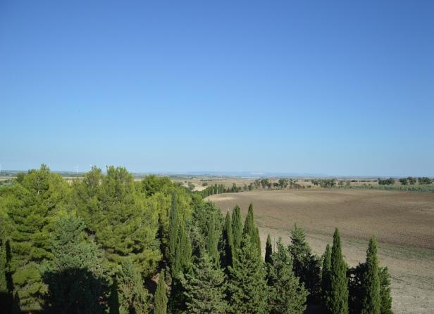 La vista della campagna dalla Torre.